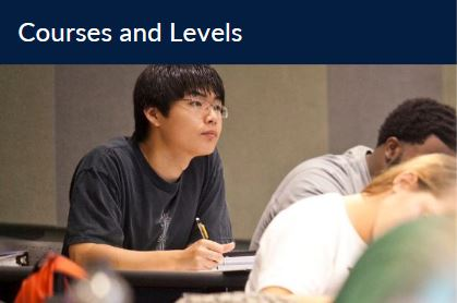 Courses and Levels